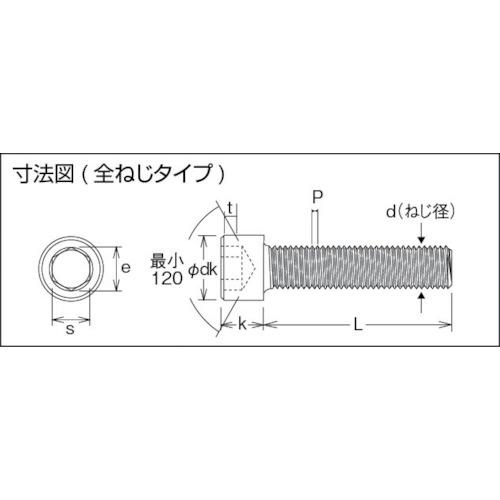 六角穴付ボルト 黒染め全ネジ M10×12 21本入
