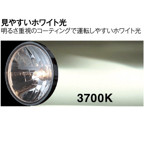 MB67 クリアホワイト H3 12V55W 3700K