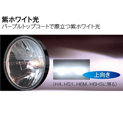 MB53 スーパープラズマGT-X H4 12V60/55W 39/36K