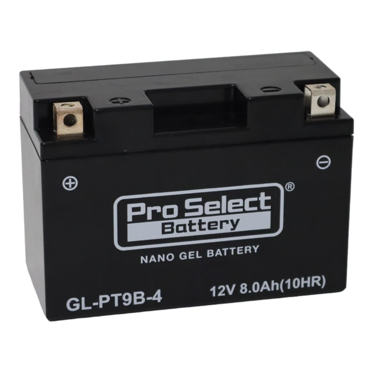 GL-PT9B-4(GT9B-4 互換)(ジェルタイプ 液入充電済)
