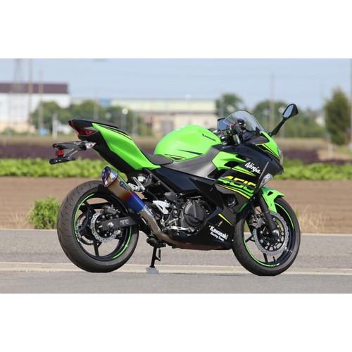 ワイバンリアルスペック18-Ninja400 スリップオン Type R RK32-03RD