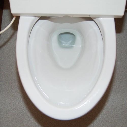 とう器専用 尿石落とし