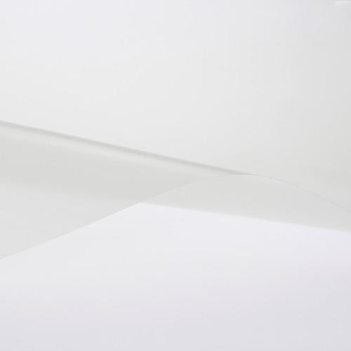 スコッチティント シュクレ・クロスヘアライン SH2CHSC A3