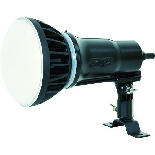 LED投光器50W 常設型 昼白色 電線1.5m 本体黒