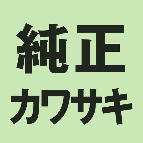 【純正部品】シャフトCOMP,ウォーター 13234-1077
