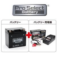 【セット売り】GL-PSZ7S (YTZ7S 互換)(ジェルタイプ 液入充電済)