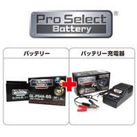 【セット売り】GL-PS4A-BS(YTR4A-BS 互換)(ジェルタイプ 液入充電済)