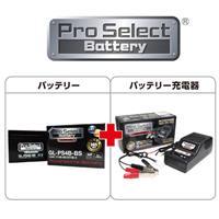 【セット売り】GL-PS4B-BS(YT4B-BS、GT4B-5 互換)(ジェルタイプ 液入充電済)