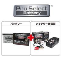 【セット売り】PB16AL-A2 (YB16AL-A2 互換)