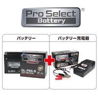 【セット売り】GL-PB9-B (YB9-B 互換)(ジェルタイプ 液入り充電済み)