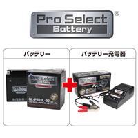 【セット売り】GL-PB10L-B2 (YB10L-B2 互換)(ジェルタイプ 液入り充電済み)