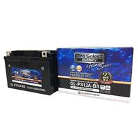 GL-PS12A-BS(YT12A-BS 互換)(ジェルタイプ 液入充電済)