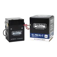 GL-PB2.5L-C(YB2.5L-C互換)(ジェルタイプ 液入り充電済み)