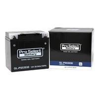 GL-PS53030(53030互換)(ジェルタイプ 液入り充電済み)
